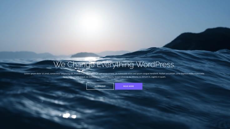 shapely free wordpress business theme